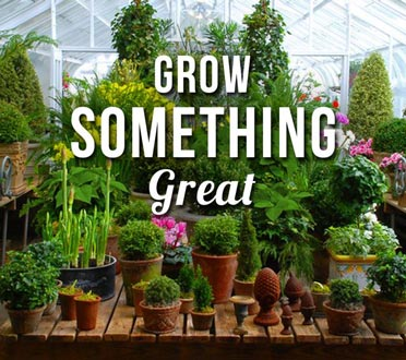 Grow something great